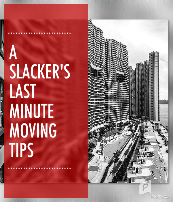 the slacker 39 s last minute moving checklist tips. Black Bedroom Furniture Sets. Home Design Ideas