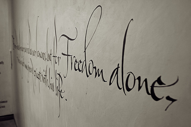 Photo of Freedom Written on a Wall