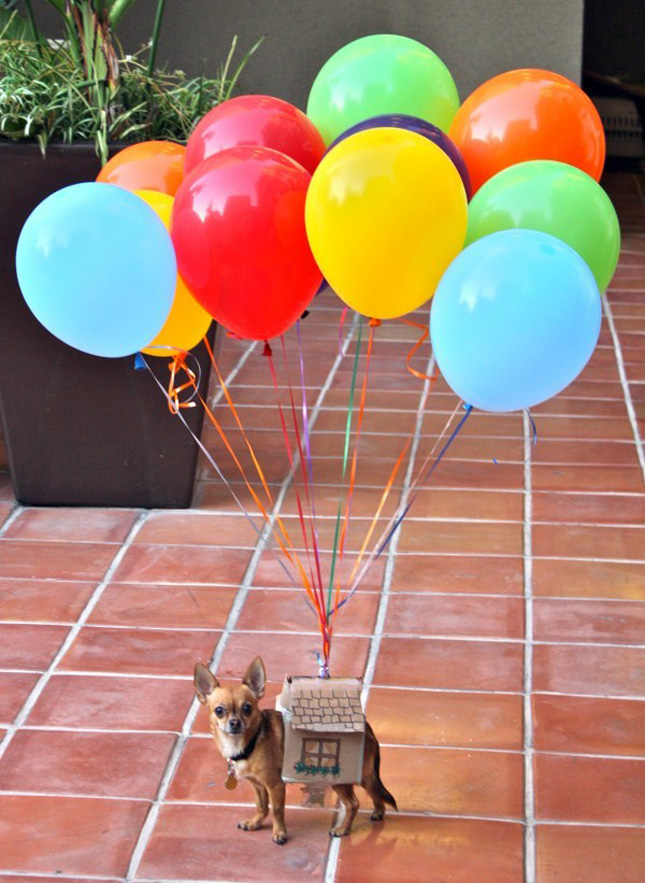 DIY Halloween Costumes - Up Balloons