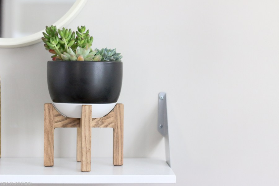 Dorm Room Ideas: DIY Room Decor - Succulent Planter